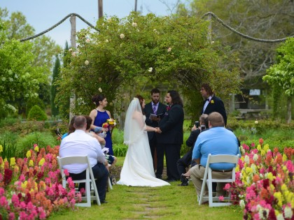 Rachel & Matthew's Wedding Photography Portfolio – Antique Rose Emporium – Brenham, TX