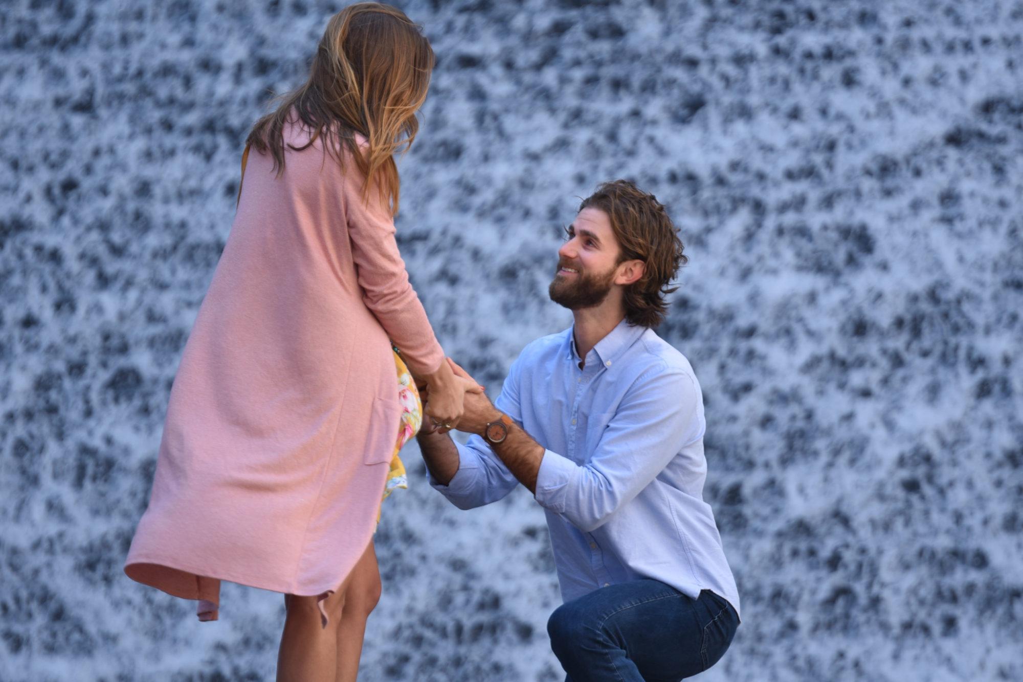 Houston Surprise Proposal