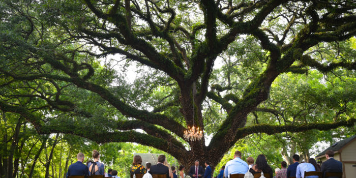 Oak Tree Manor – Spring, TX